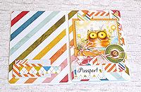 Обложка на паспорт Солнечный котэ